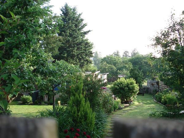 Gartenjahr 2008